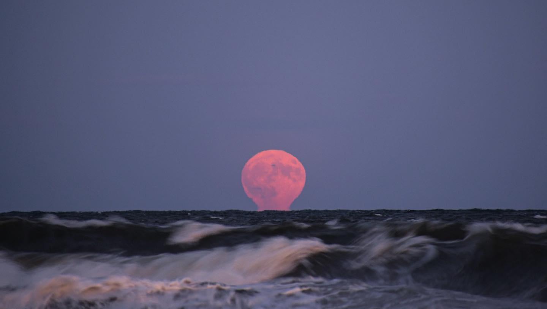 Full Moon, South Shore 9/2019